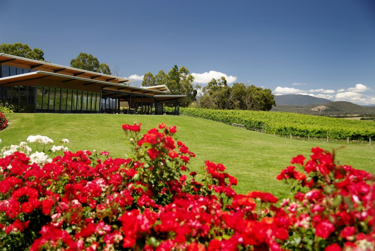 Balgownie Estate Vineyard Resort  Spa - QLD Tourism