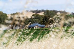 Triple Creek Guest House - Barossa Region - QLD Tourism