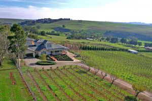 Waybourne- Vineyard and Winery - QLD Tourism