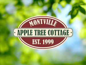 Apple Tree Cottage and Studio - QLD Tourism