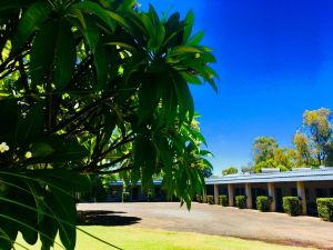 Balonne River Motor Inn - QLD Tourism